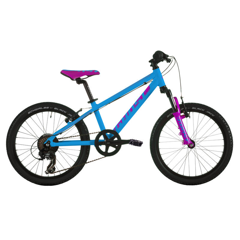 Powerkid 20 Bicycle Cyan/Pink
