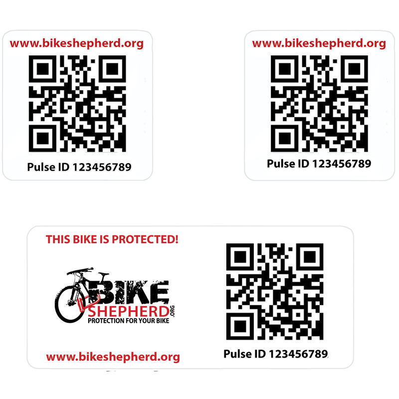 Anti-Theft Pulse ID Tag Set