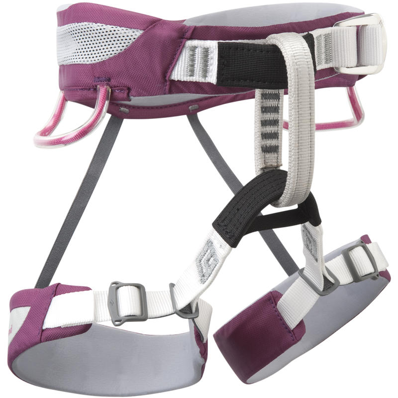 Wiz Kid Harness Raspberry