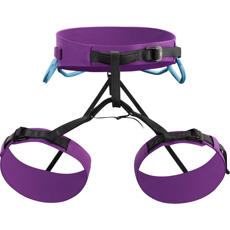 AR 385a Harness Sumire