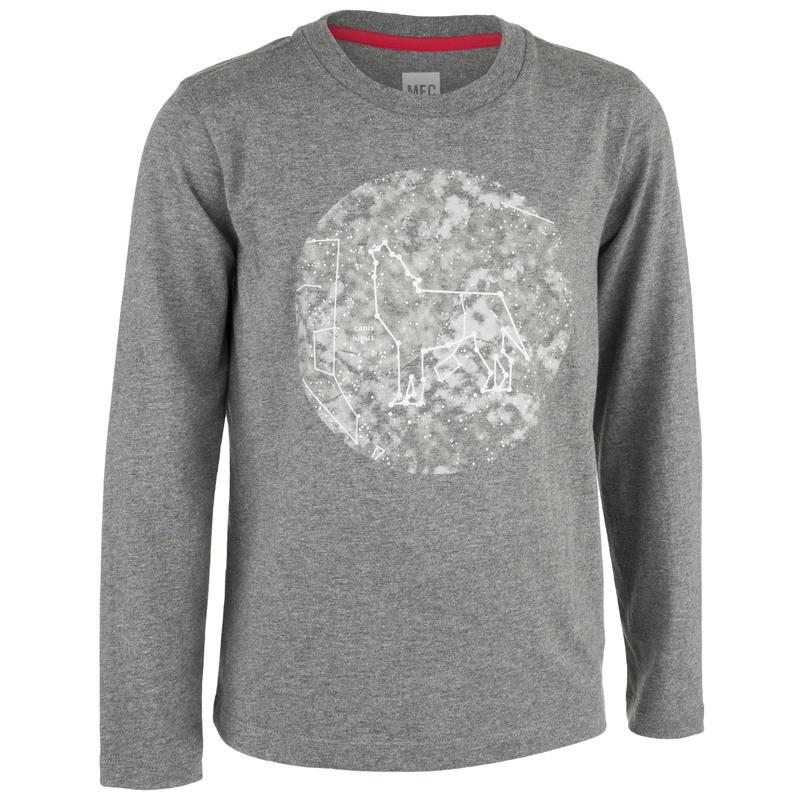 Chandail Tyler Graphique constellation loup chiné gris foncé