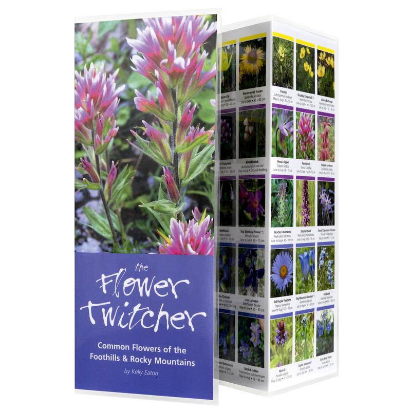 The Flower Twitcher Rocky Mountain Flower Guide