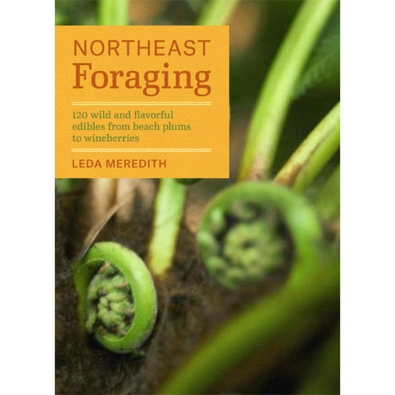 Northeast Foraging