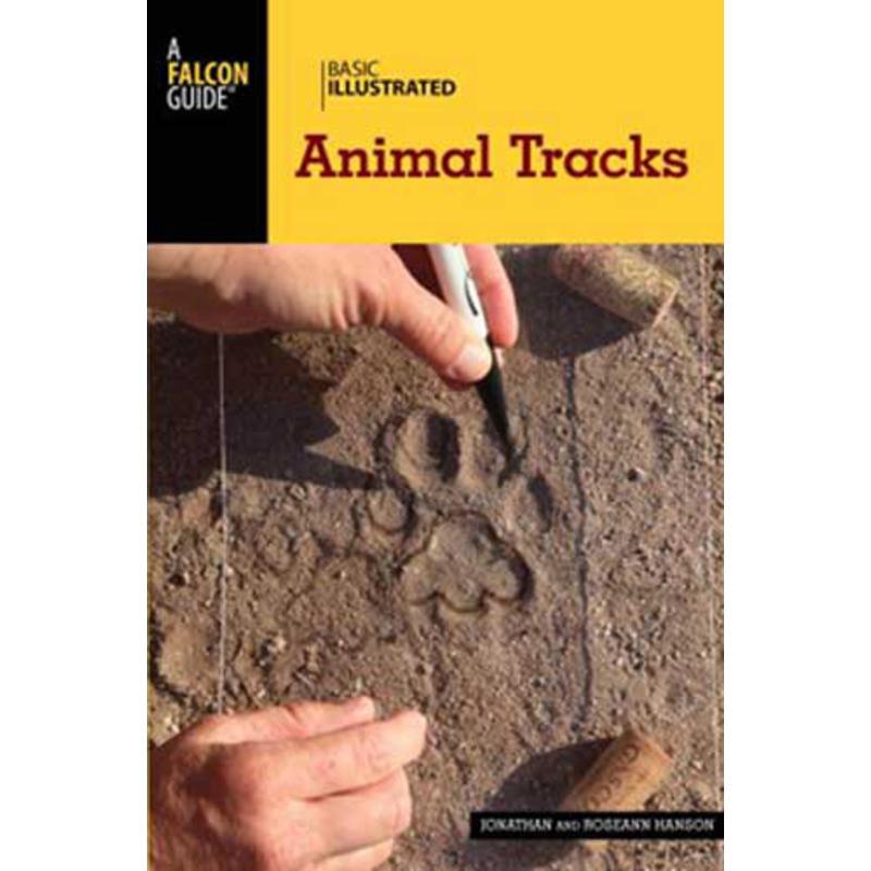 Basic Illustrated Animal Tracks
