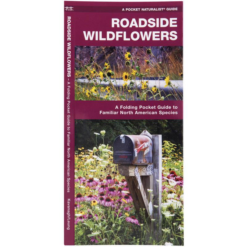 Roadside Wildflowers Pocket Guide