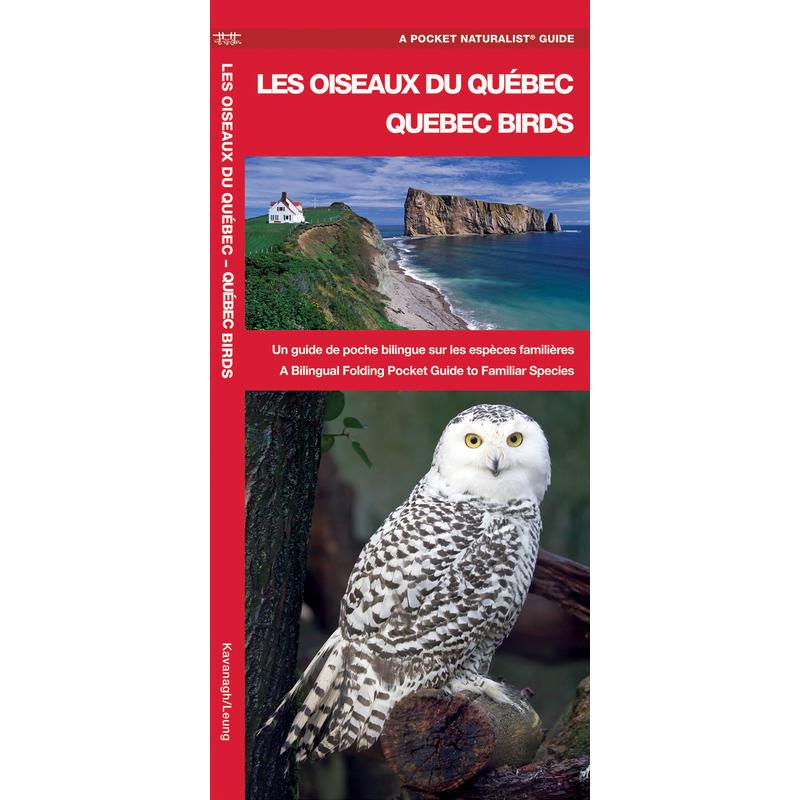 Les oiseaux du Québec - Quebec Birds