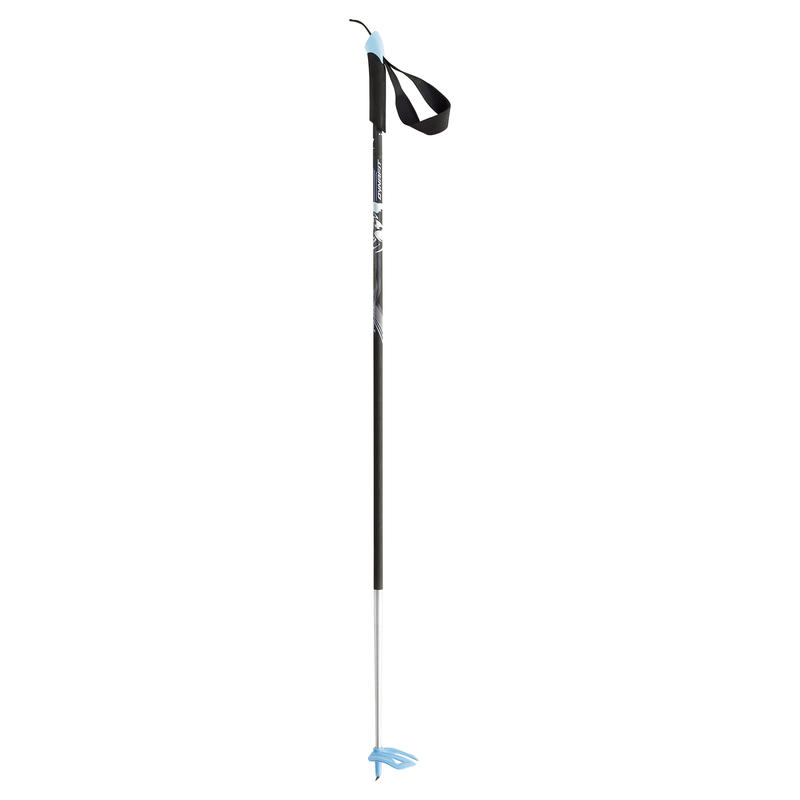 Bâtons de ski PDG Argent/Bleu