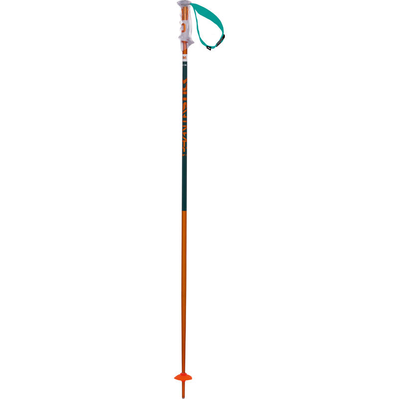 Bâtons de ski Phantastick 2 Pétrole
