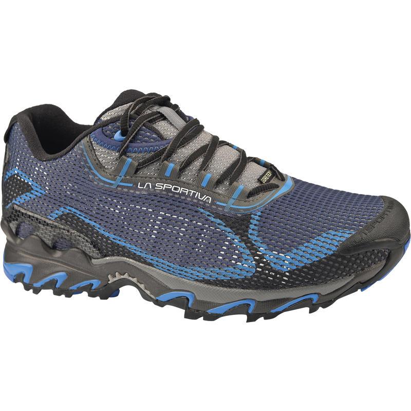 Chaussures de course Wildcat 2.0 GTX Bleu/Noir
