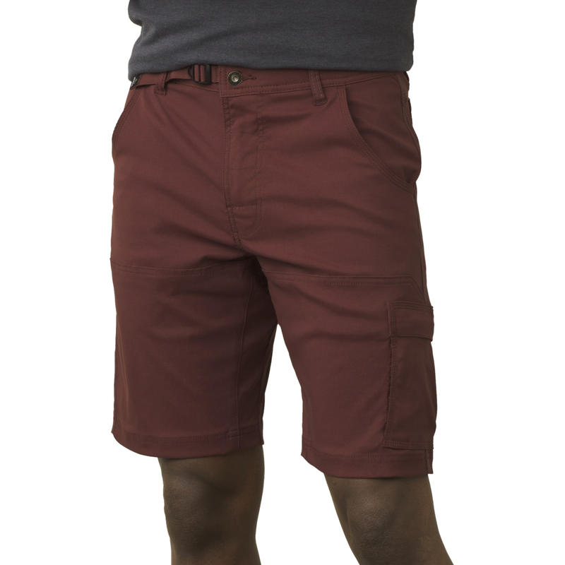 Zion Shorts Raisin