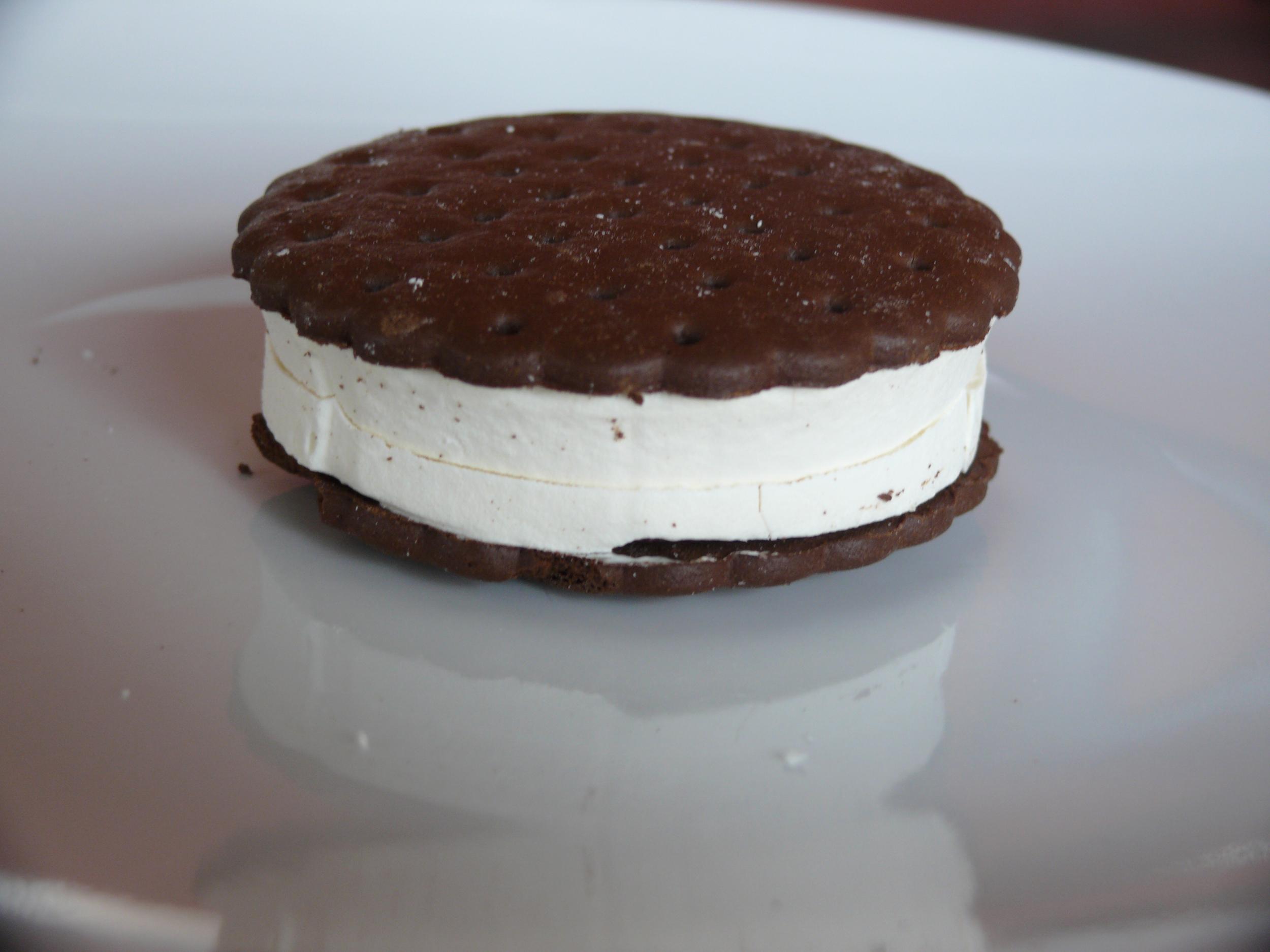 Backpacker s Pantry Vanilla Ice Cream Sandwich