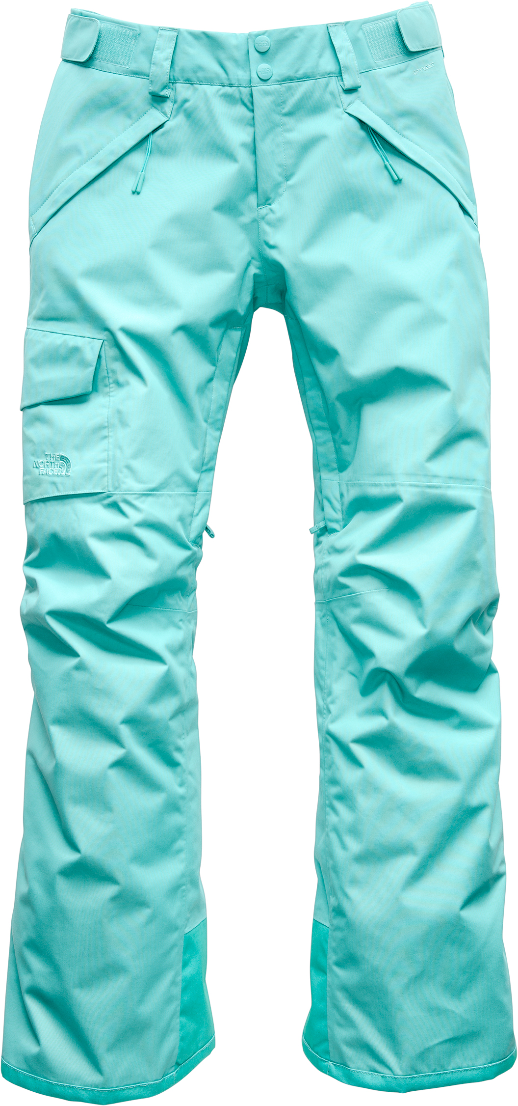 8d7661d730e The North Face Freedom Insulated Pants - Women s