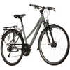 Panamao 3 Bicycle Grey/Dark Grey