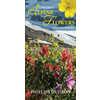 Alpine Flowers of the Pacific Northwest