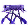 Luna Harness Violet