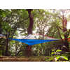 Flite+ 2-Person Tree Tent Forest Green