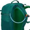 Forge 50 Backpack Seaweed/National Park