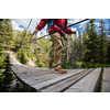 Bottes de randonnée légère imperméables Trail Brun roux