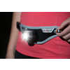 Lumen 220 Waist Light