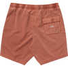 Short de surf All Day Layback Rouille
