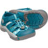 Newport H2 Sandals Deep Lagoon/Tahitian Tide