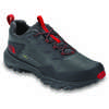 Ultra Fastpack III Gore-Tex Light Trail Shoes Blackened Pearl/TNF Red