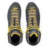 Chaussures de courte randonnée Alp Trainer Mid GTX Carbone/Reine-Claude