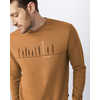 Stand Tall Pull Over Crew Brown Sugar