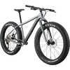 Fat CAAD 1 Bicycle Gray