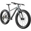 2020 Fat CAAD 1 Bicycle Gray