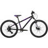 Ace Ltd. Bicycle Black/Purple
