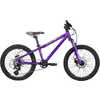 Dash LTD Bike Purple/Silver