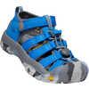 Newport H2 Sandals Sky Diver