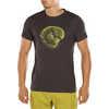 Cross Section T-Shirt Carbon/Kiwi