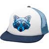 Ambler Faces Hat Raccoon
