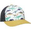 Little Leaguer Hat Dino