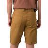 "Ulterior Shorts 9"" Inseam Embark Brown"