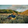 Tente Eco Trail 2 personnes Stinger Yellow/Meridian Blue