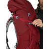 Ariel 55 Pack Claret Red