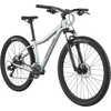 Trail 8 Bicycle Sage Grey