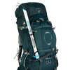 Ariel Plus 70 Pack Night Jungle Blue