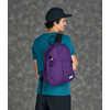 Anniversary Pika Plus Pack Regal Purple